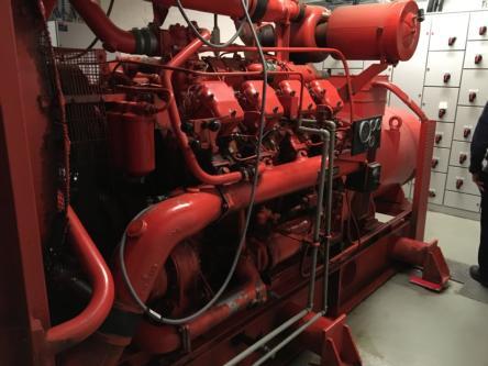 Dorman Generator